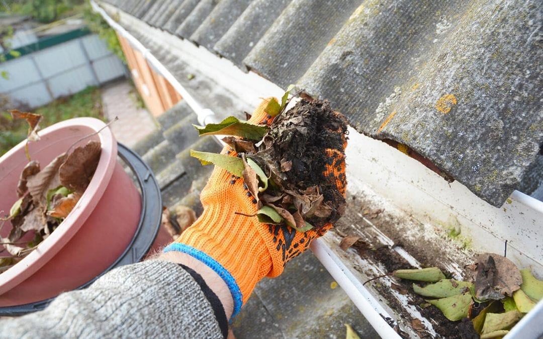5 Tips to Clean Gutters